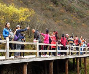 Чем нельзя заниматься в Китае туристам?